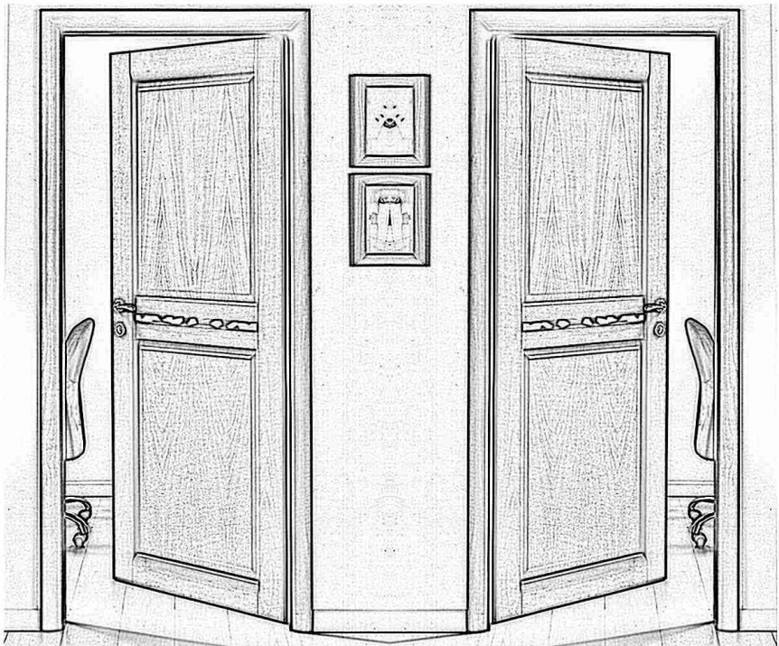 Дверь Стальная линия Флора 100 Черно-серый - Черно-серый